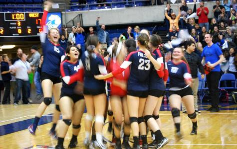 Volleyball Repeats as D-V Section Champs